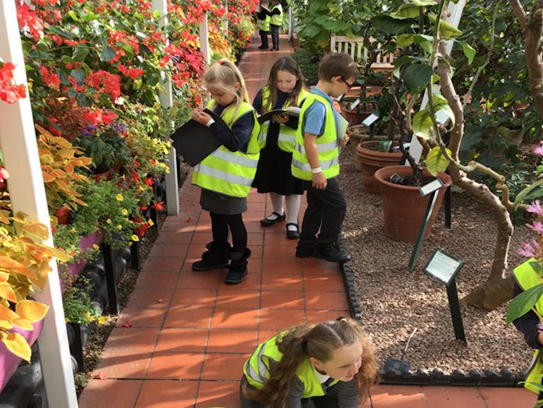Year 3 at the Botanical Gardens